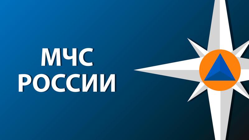 Спасатели МЧС России убыли в населенный пункт Видное Вяземского района