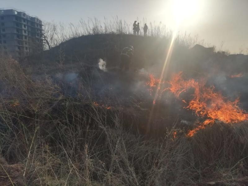 За прошедшие сутки пожарно-спасательные подразделения Хабаровского края порядка 50 раз выезжали на тушение возгораний сухой растительности